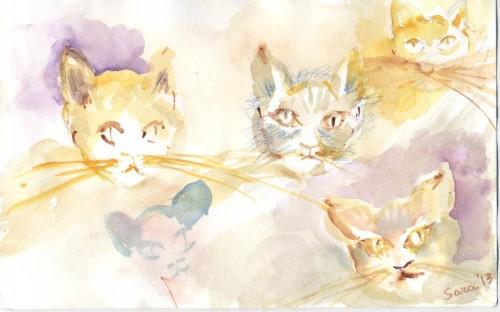 cat action.jpg